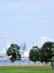 お台場から東京を眺める