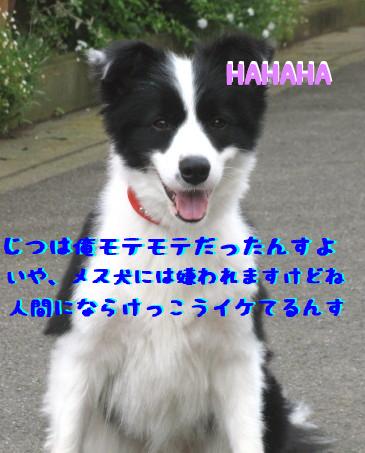 IMG_0004_1.jpg
