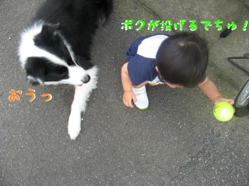 IMG_0013_1.jpg