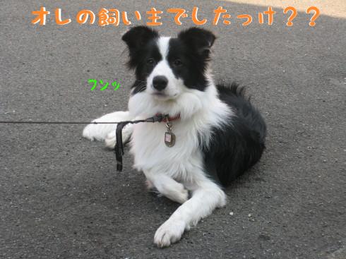 IMG_0013_2.jpg