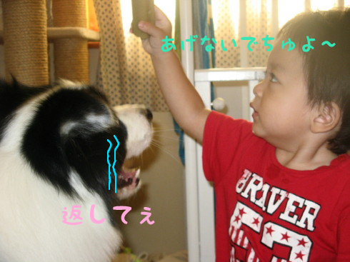 IMG_0021_2.jpg