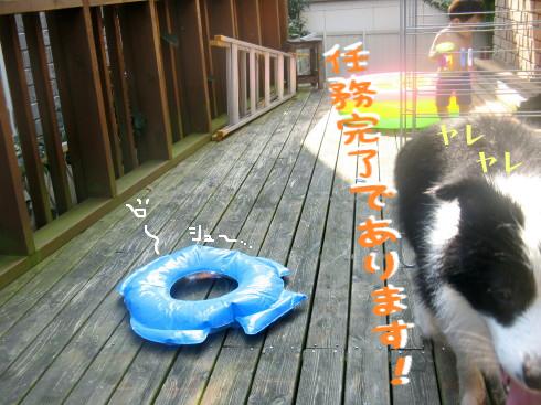 IMG_0023_2.jpg