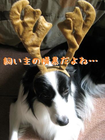IMG_0025_4.jpg