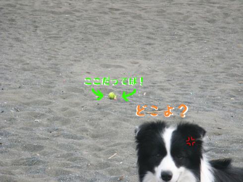 IMG_0039_3.jpg