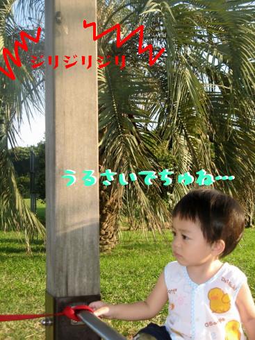 IMG_0039_5.jpg