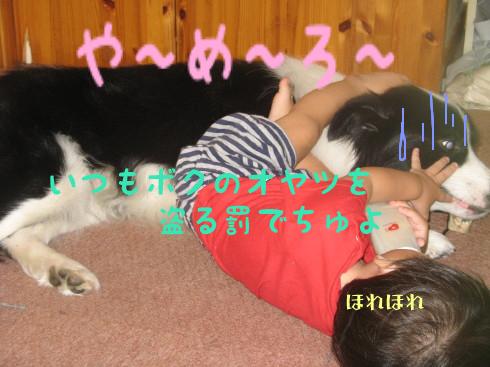 IMG_0040_1.jpg
