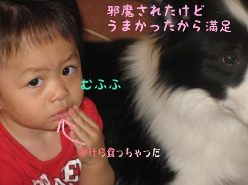 IMG_0043_1.jpg