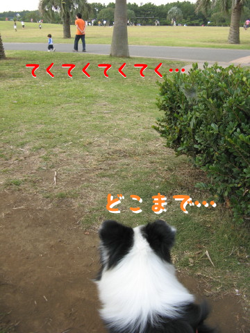IMG_0044_2.jpg