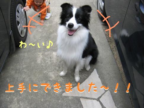 IMG_0046_3.jpg