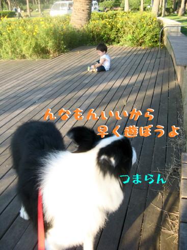 IMG_0064_2.jpg