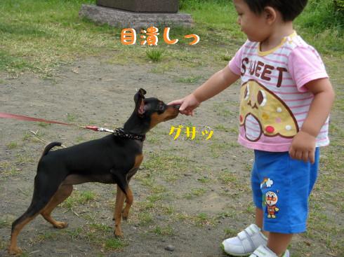 IMG_0064_3.jpg