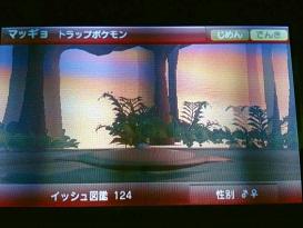 IMG_1256.jpg