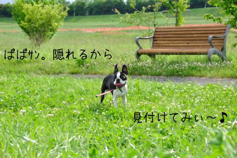 006_DSC_5682_398.jpg
