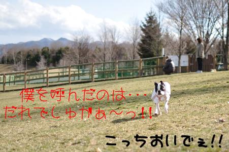 004_誰ですかぁ~のコピー