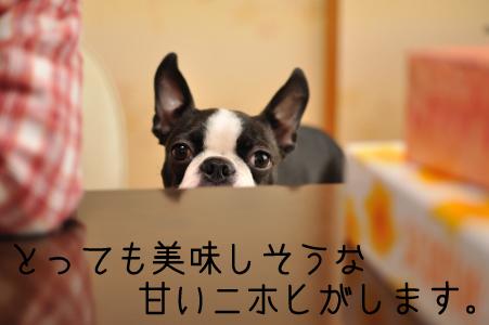 002_甘いニホヒ