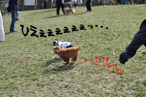 003_ひえぇぇぇぇぇ