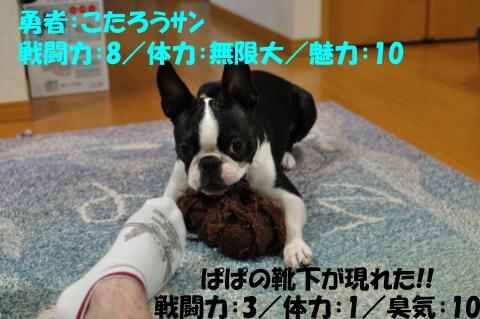 20090727-006.jpg