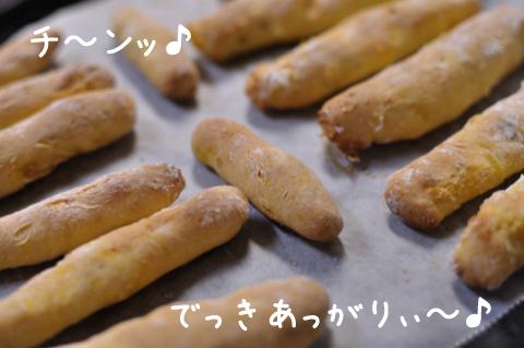 20090927_004.jpg