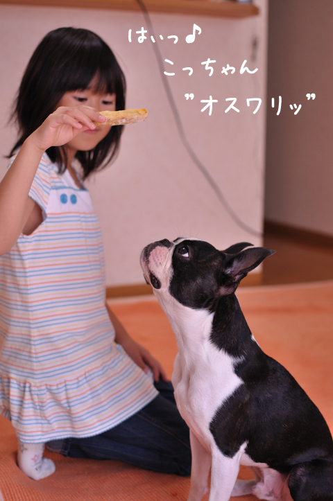 20090927_006.jpg