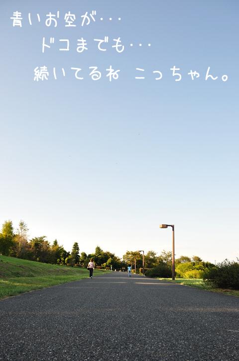 20091004_010.jpg