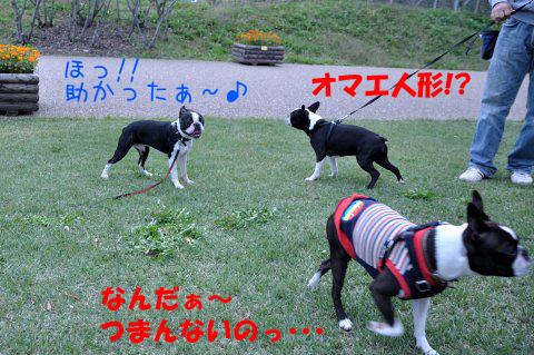 20091011_006.jpg