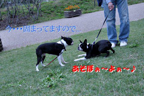 20091011_010.jpg