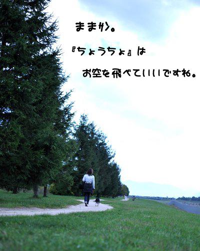 20091018_010.jpg