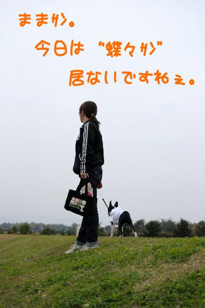 20091024_006.jpg