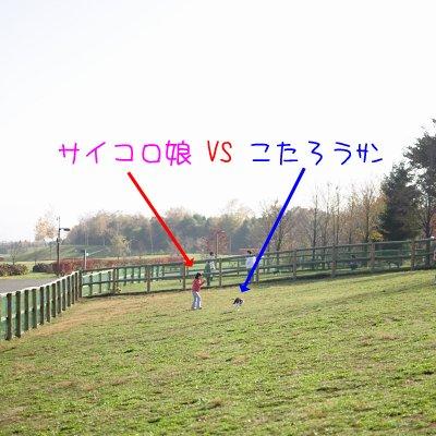 20091107_002.jpg