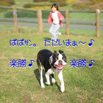20091107_006.jpg