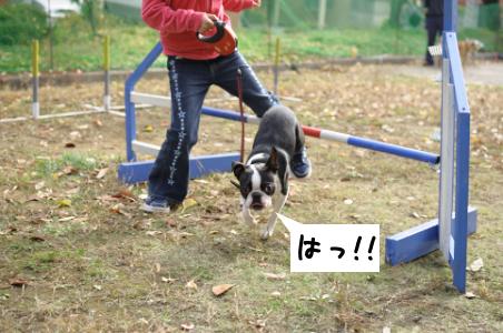 20091108_004.jpg