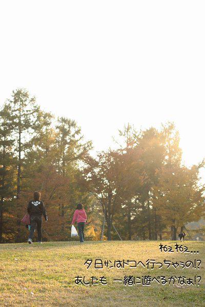 20091108_010.jpg