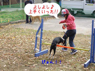 20091109_009.jpg