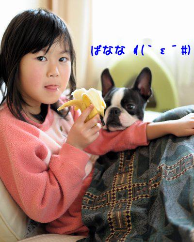 20091125_003.jpg