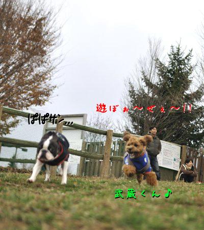 20091129_005.jpg