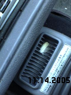 20051114095400
