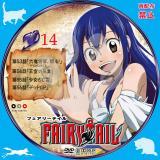 FAIRYTAIL フェアリーテイル 14_02b