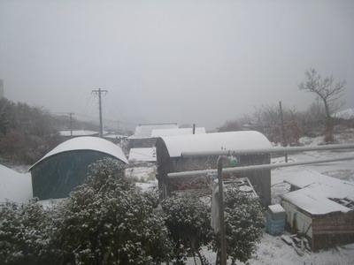 IMG_1417雪