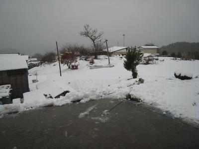 IMG_2001雪