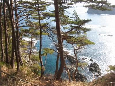 IMG_2233海
