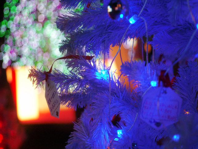 2008年12月06日_PICT0048