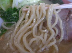 10011015ほた丸・濃厚鶏白湯醤油らぁめん尺八 麺アップ(謹製寸八麺)