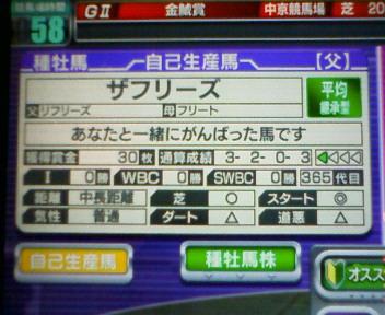 11_20100223172918.jpg