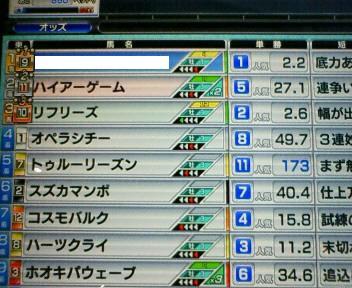 13_20100227154243.jpg