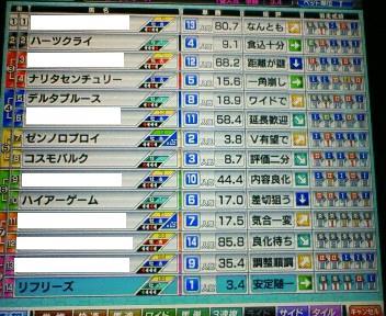 15_20100227154426.jpg