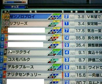 16_20100227154425.jpg