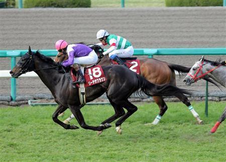 20100417-00000521-sanspo-horse-view-000.jpg