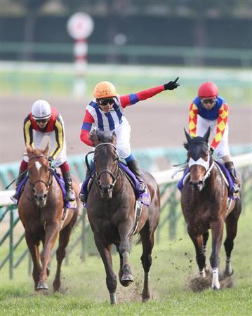 20100418-00000522-sanspo-horse-view-000.jpg
