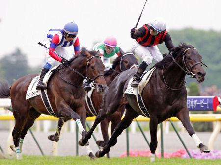 20100531-00000050-spn-horse-view-000.jpg