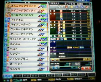 22_20100227154514.jpg